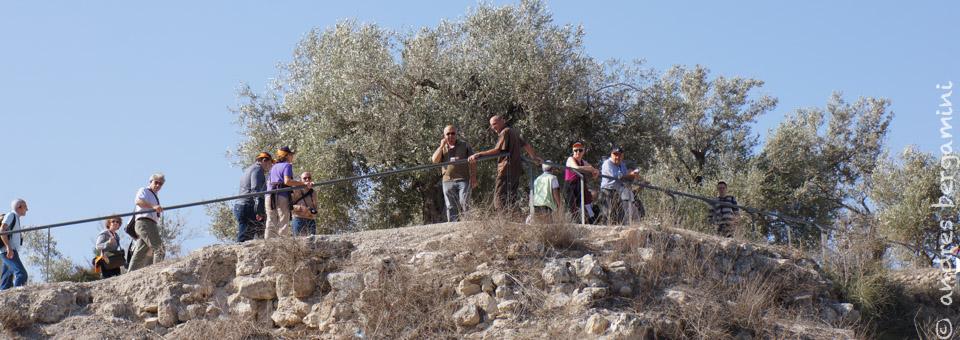 Il pellegrinaggio dei don Giovanni in Terra Santa 2013