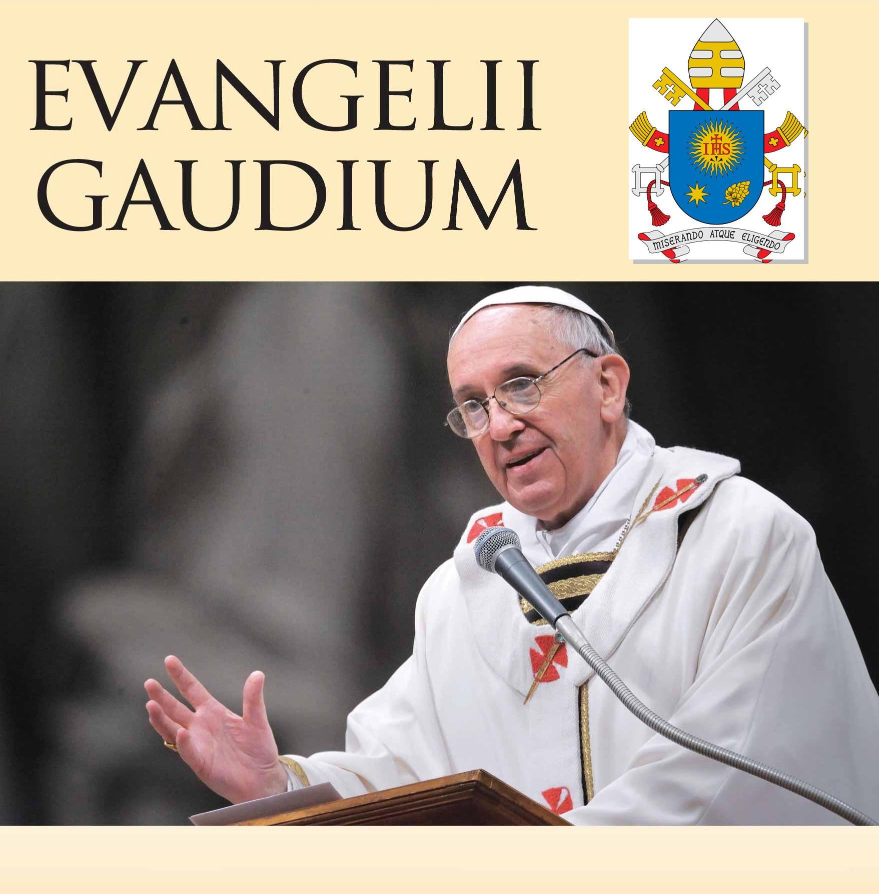 """""""Evangelii Gaudium"""" alla Dozza"""
