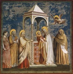 Presentazione di Gesù al tempio_Giotto