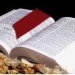 BibbiaSenzaSosta_CasaDellaCarita(275x185)